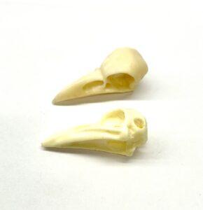 Steampunk vogel schedel Mika